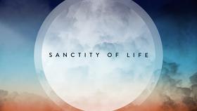 Sanctity of Life Suncatcher